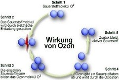 Ozonbehandlung München